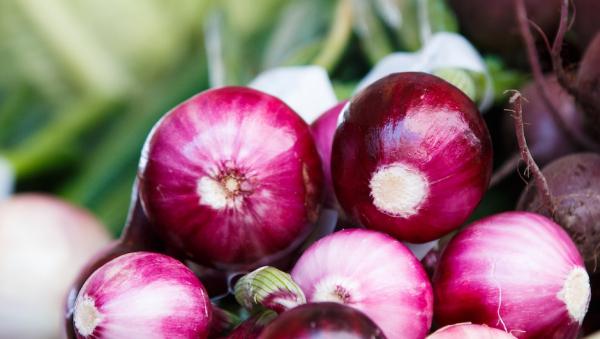 Красный лук стал причиной вспышки сальмонеллеза в США