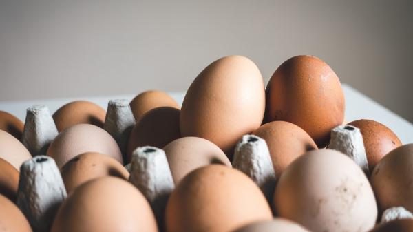 В Роскачестве рассказали, как выбрать яйца