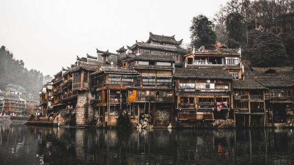Эксперты ВОЗ посетят Китай для расследования причин появления COVID-19