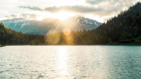 Солнечный свет оказался защитой от смерти из-за коронавируса