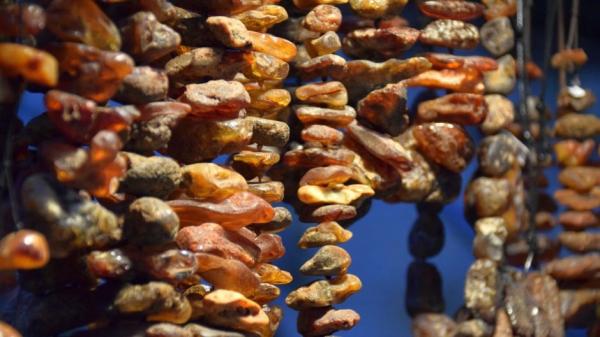 У балтийского янтаря нашли свойства суперантибиотика